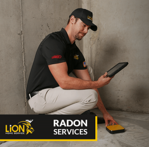 Lion Home Service Radon Services