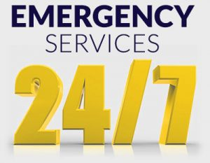 Lion Home Service 24-7 Emergency Services