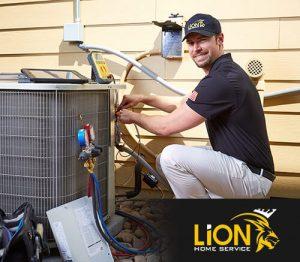 Lion Home Service AC Repair