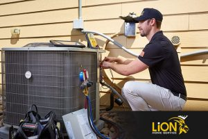 Lion Home Service Air Conditioning Repairs