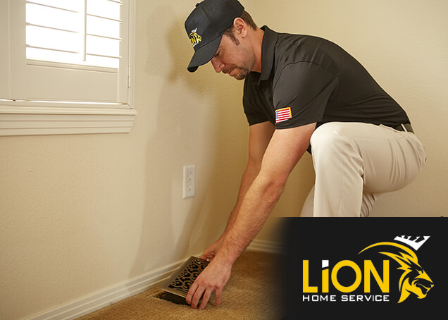 Lion Home Service AC Maintenance