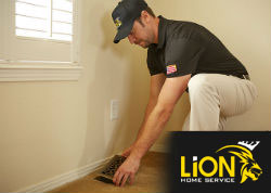 Lion-Home-Service-AC-Contractors-Windsor-CO