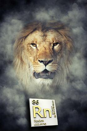 Lion-Home-Service-Radon-Mitigation-Loveland-CO