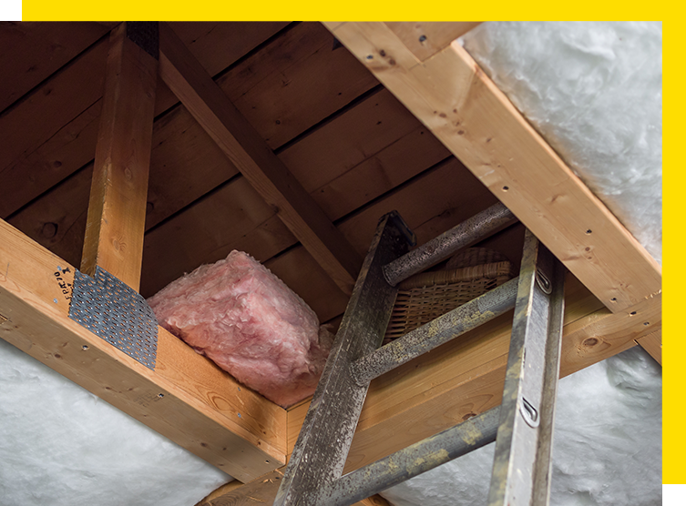 Trusted Insulation Services in Windsor